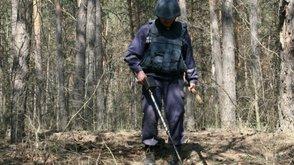 снаряды в лесу