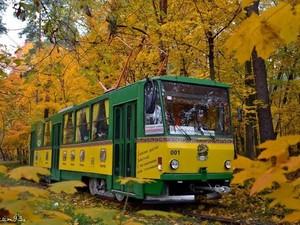пуща-водица трамвай
