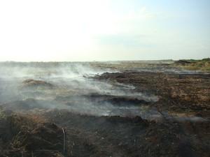 торфяной пожар киев
