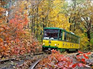 сказочный трамвай в киеве
