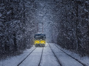 трамвай в пущу-водицу