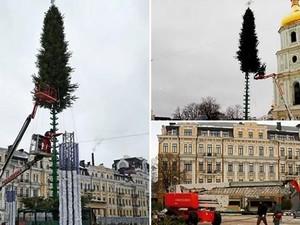 Монтаж новогодней елки намерены завершить до 15 декабря