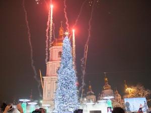 Киевская елка стала третьей по высоте в стране