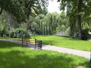 Работа по созданию в Киеве новых зеленых зон происходит крайне медленно